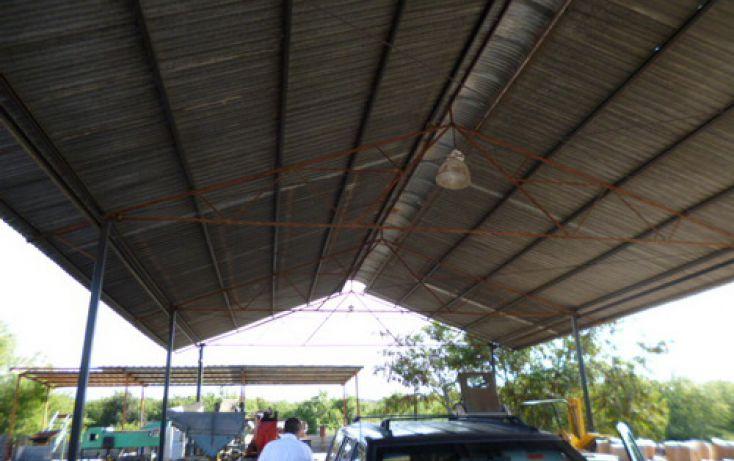 Foto de terreno comercial en renta en, pesquería, pesquería, nuevo león, 1149825 no 03