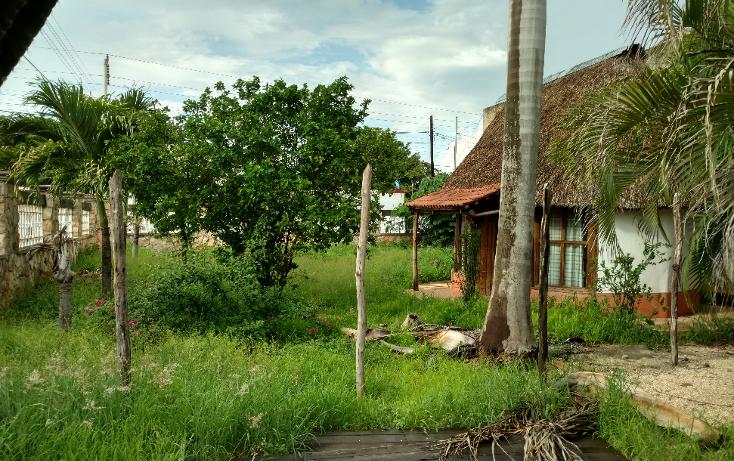 Foto de casa en venta en  , pet-kanche, mérida, yucatán, 2020472 No. 17