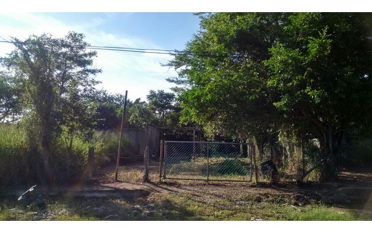 Foto de terreno habitacional en venta en  , petrolera, altamira, tamaulipas, 1489545 No. 02