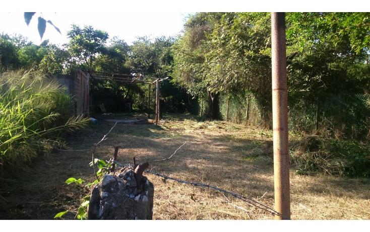Foto de terreno habitacional en venta en  , petrolera, altamira, tamaulipas, 1489545 No. 04