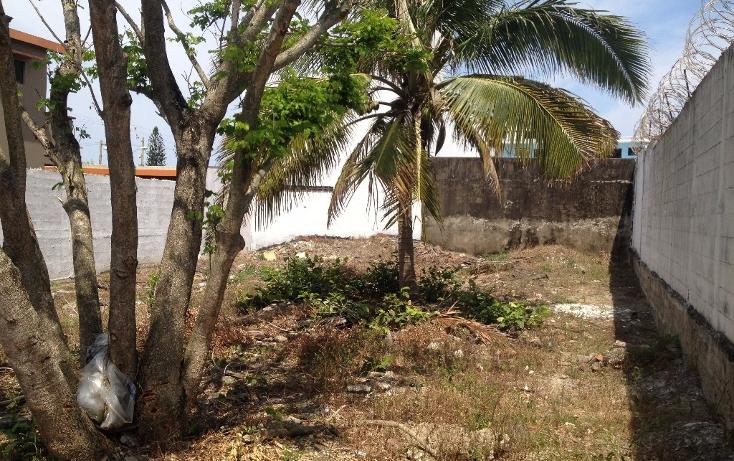 Foto de terreno habitacional en renta en  , petrolera, coatzacoalcos, veracruz de ignacio de la llave, 1894622 No. 01