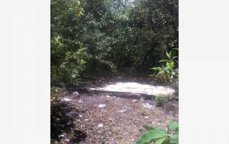 Foto de terreno comercial en renta en piaztic 7, palmas, la magdalena contreras, df, 2010440 no 08