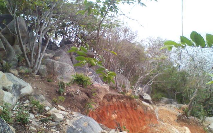 Foto de terreno habitacional en venta en  , pichilingue, acapulco de juárez, guerrero, 1612736 No. 05