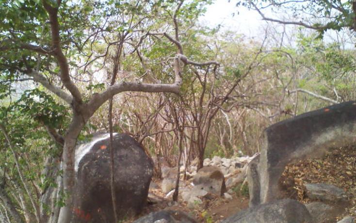 Foto de terreno habitacional en venta en  , pichilingue, acapulco de juárez, guerrero, 1612736 No. 12