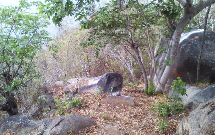 Foto de terreno habitacional en venta en  , pichilingue, acapulco de juárez, guerrero, 1612736 No. 13