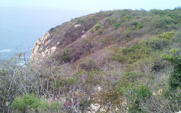 Foto de terreno habitacional en venta en  , pichilingue, acapulco de juárez, guerrero, 1612736 No. 16