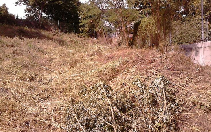 Foto de terreno habitacional en venta en  , pie de la cuesta, acapulco de juárez, guerrero, 1501591 No. 07