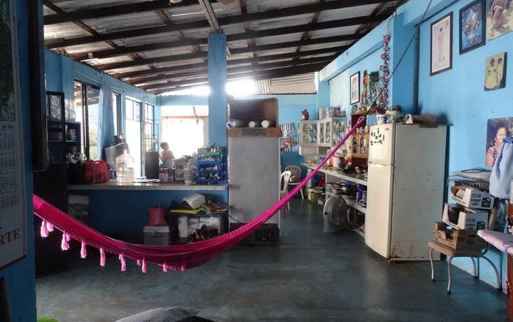 Foto de terreno habitacional en venta en  , pie de la cuesta, acapulco de juárez, guerrero, 1700730 No. 07