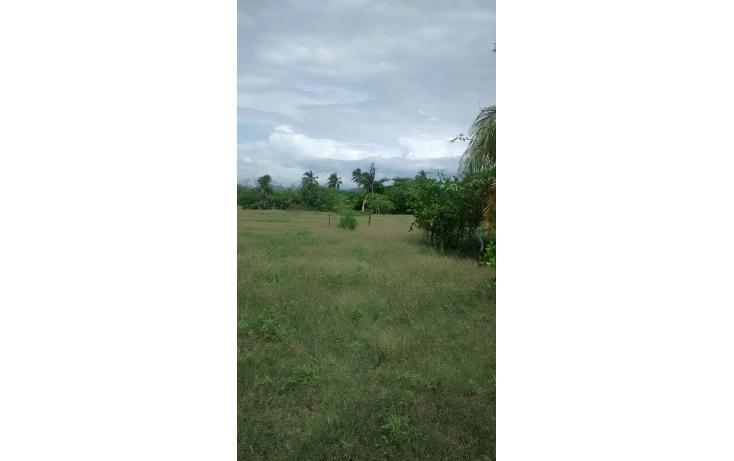 Foto de terreno habitacional en venta en  , pie de la cuesta, acapulco de juárez, guerrero, 1700804 No. 04