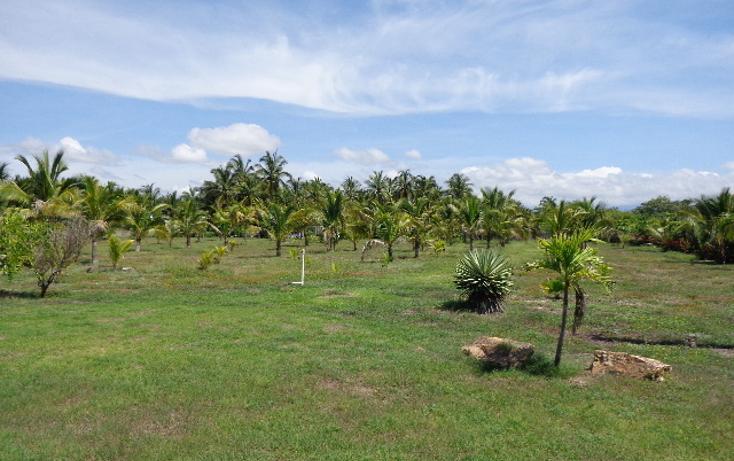 Foto de terreno habitacional en venta en  , pie de la cuesta, acapulco de juárez, guerrero, 450234 No. 10