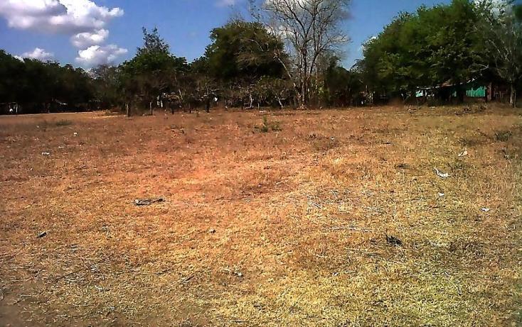 Foto de terreno comercial en venta en  , piedras negras, tlalixcoyan, veracruz de ignacio de la llave, 1755562 No. 01