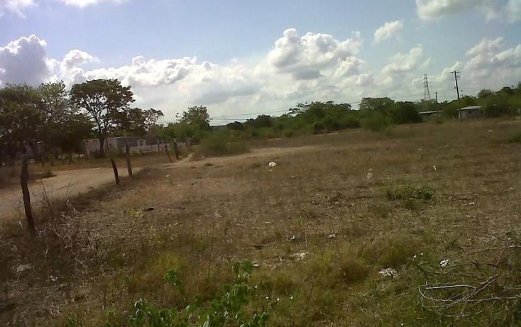 Foto de terreno comercial en venta en  , piedras negras, tlalixcoyan, veracruz de ignacio de la llave, 1755562 No. 03