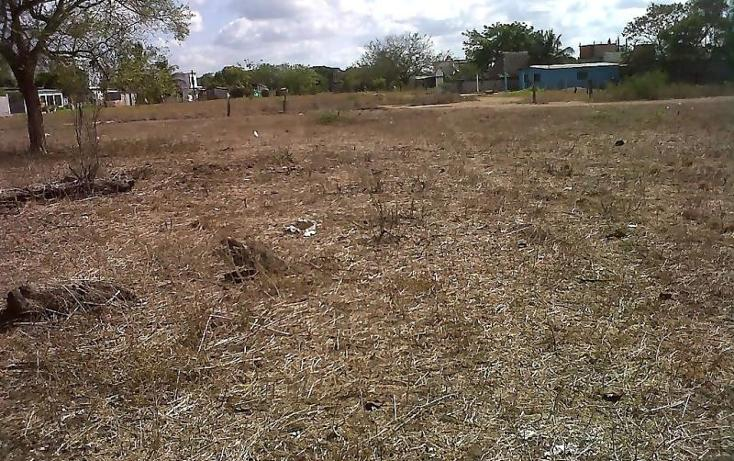 Foto de terreno comercial en venta en  , piedras negras, tlalixcoyan, veracruz de ignacio de la llave, 1755562 No. 04
