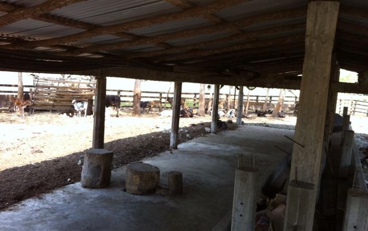 Foto de rancho en venta en  , pijijiapan centro, pijijiapan, chiapas, 1474289 No. 02