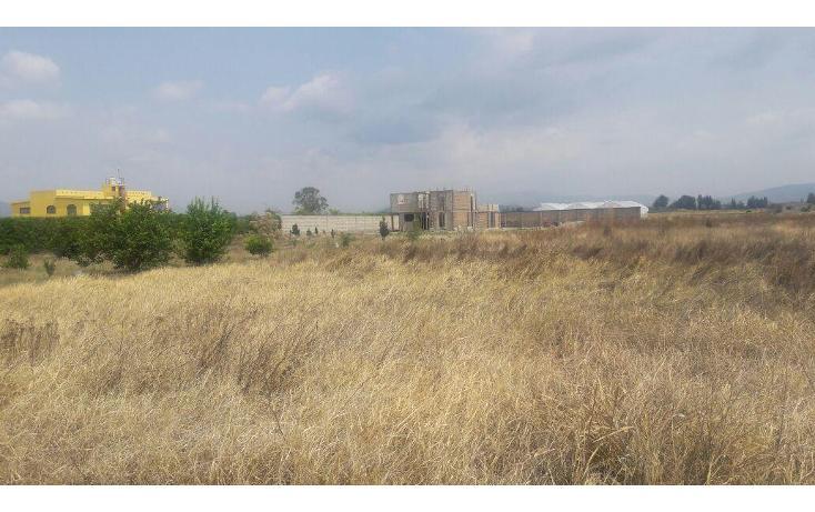 Foto de terreno habitacional en venta en  , pilcaya, pilcaya, guerrero, 2021863 No. 01