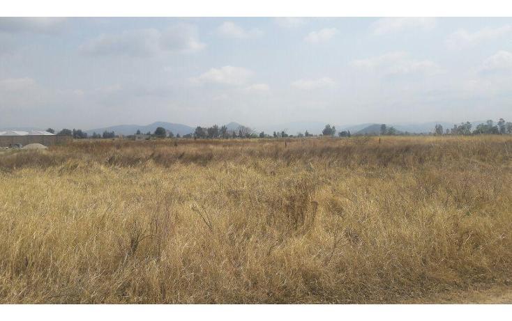 Foto de terreno habitacional en venta en  , pilcaya, pilcaya, guerrero, 2021863 No. 02