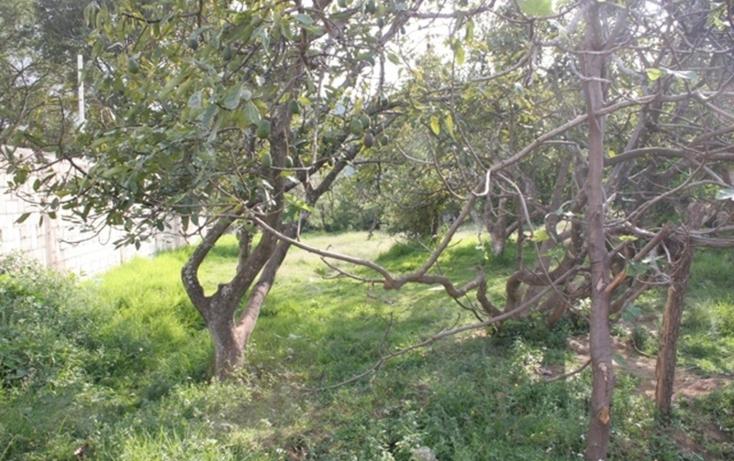 Foto de terreno habitacional en venta en  , valle de bravo, valle de bravo, méxico, 829531 No. 04