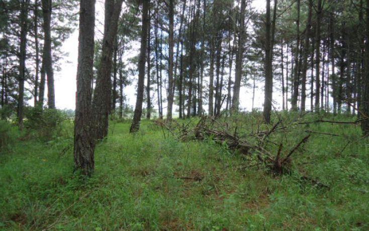 Foto de terreno habitacional en venta en pinal del marquezado sn, valle de bravo, valle de bravo, estado de méxico, 1698156 no 01