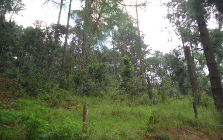 Foto de terreno habitacional en venta en pinal del marquezado sn, valle de bravo, valle de bravo, estado de méxico, 1698156 no 02