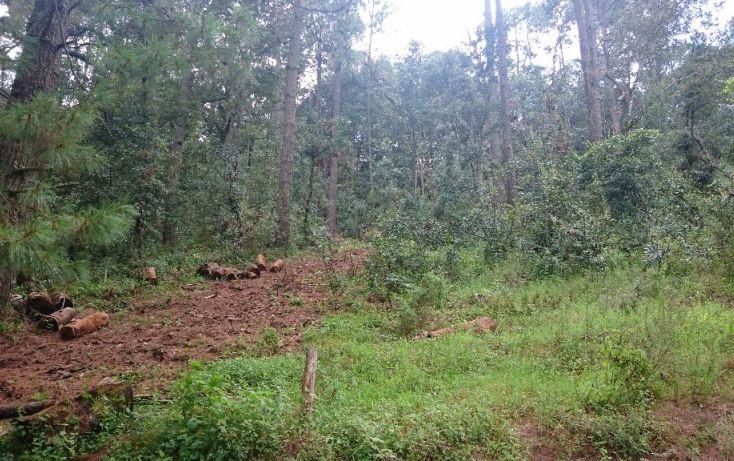 Foto de terreno habitacional en venta en pinal del marquezado sn, valle de bravo, valle de bravo, estado de méxico, 1698156 no 06