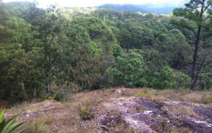 Foto de terreno habitacional en venta en  , valle de bravo, valle de bravo, méxico, 829485 No. 03