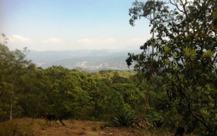 Foto de terreno habitacional en venta en pinal del marquezado , valle de bravo, valle de bravo, méxico, 829485 No. 05
