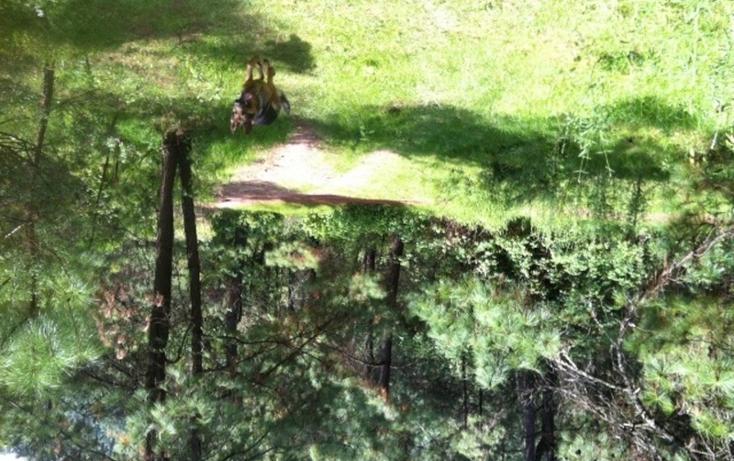 Foto de terreno habitacional en venta en  , valle de bravo, valle de bravo, méxico, 829485 No. 06
