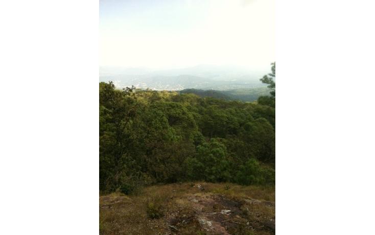 Foto de terreno habitacional en venta en  , valle de bravo, valle de bravo, méxico, 829485 No. 10