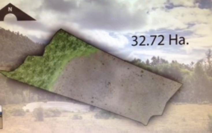 Foto de terreno habitacional en venta en pinar de osorios , pinar de osorios, valle de bravo, méxico, 3415232 No. 04