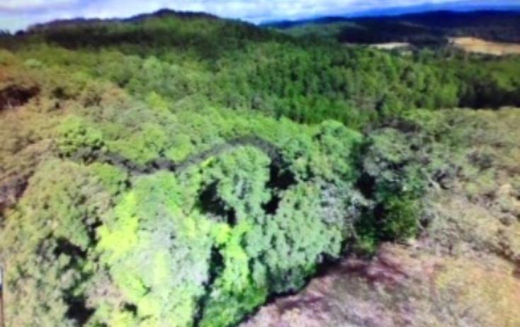 Foto de terreno habitacional en venta en pinar de osorios , pinar de osorios, valle de bravo, méxico, 3415232 No. 05