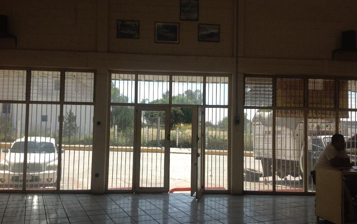 Foto de edificio en venta en  , pintores mexicanos, aguascalientes, aguascalientes, 1266851 No. 11