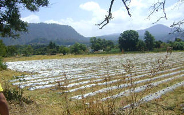 Foto de terreno habitacional en venta en  , pipioltepec, valle de bravo, méxico, 1698004 No. 04