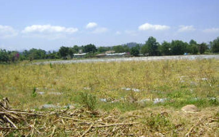 Foto de terreno habitacional en venta en  , pipioltepec, valle de bravo, méxico, 1698004 No. 06