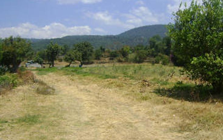 Foto de terreno habitacional en venta en  , pipioltepec, valle de bravo, méxico, 1698004 No. 09