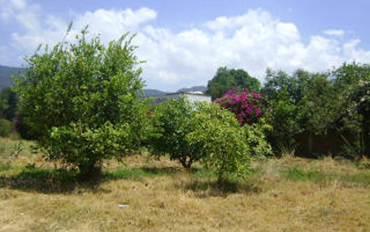 Foto de terreno habitacional en venta en  , pipioltepec, valle de bravo, méxico, 1698004 No. 10