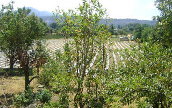 Foto de terreno habitacional en venta en  , pipioltepec, valle de bravo, méxico, 1698004 No. 12