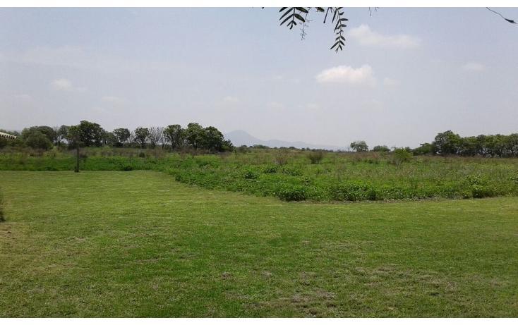 Foto de terreno habitacional en venta en  , pita, corregidora, querétaro, 1061445 No. 19