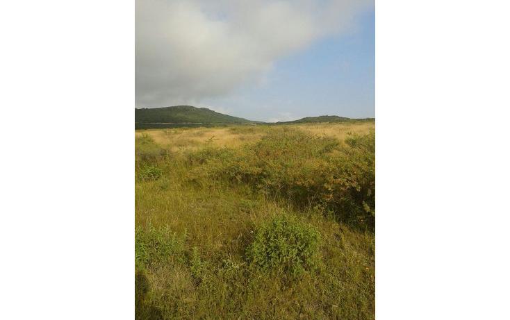Foto de terreno habitacional en venta en  , pita, corregidora, querétaro, 1061445 No. 30