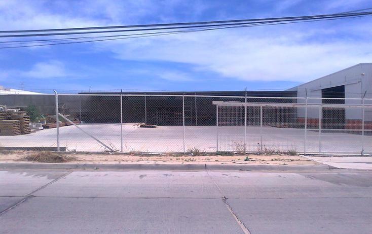 Foto de nave industrial en venta en pitaya , lomas del pacifico, los cabos, baja california sur, 1316637 No. 03