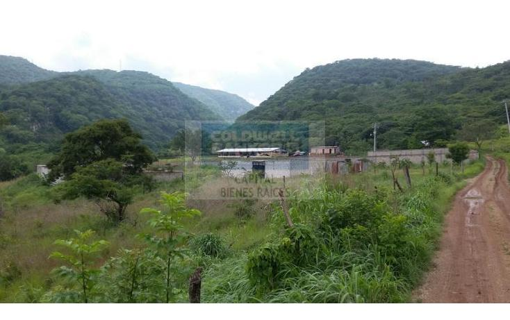 Foto de terreno comercial en venta en  , plan de ayala, tuxtla gutiérrez, chiapas, 1843796 No. 02