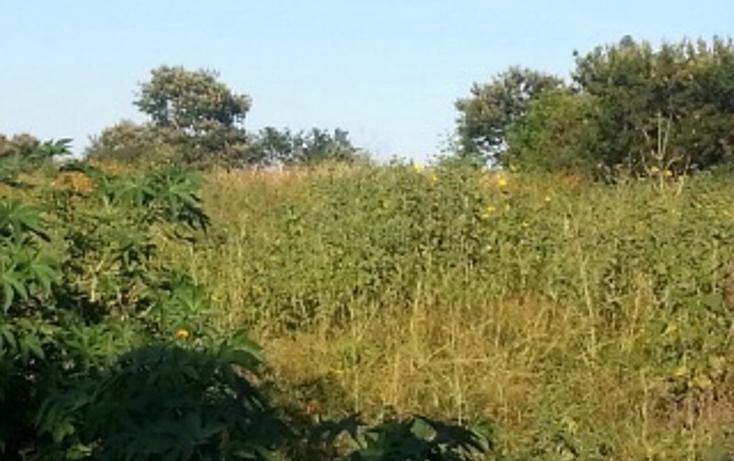 Foto de terreno habitacional en venta en  , plan de oriente, san pedro tlaquepaque, jalisco, 1856250 No. 01