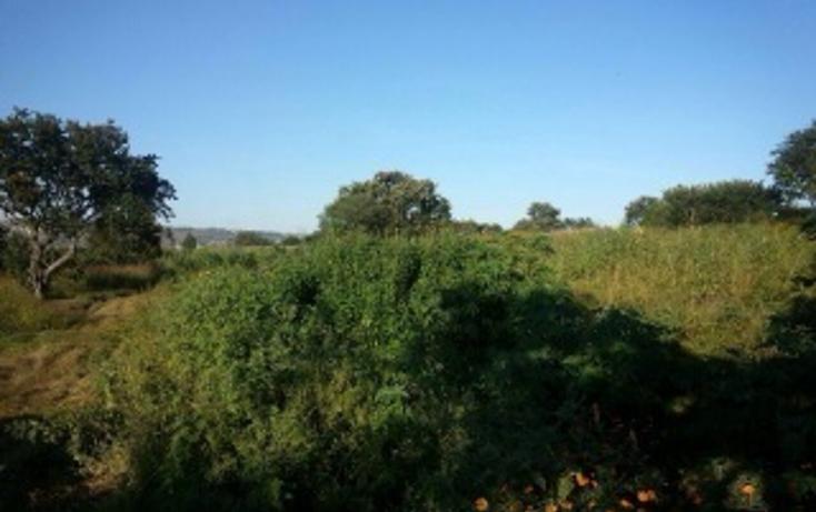 Foto de terreno habitacional en venta en  , plan de oriente, san pedro tlaquepaque, jalisco, 1856250 No. 03
