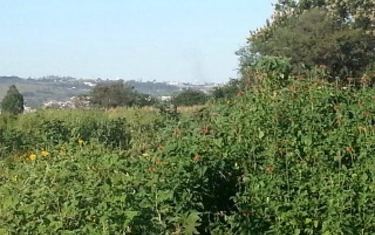 Foto de terreno habitacional en venta en  , plan de oriente, san pedro tlaquepaque, jalisco, 1856250 No. 04