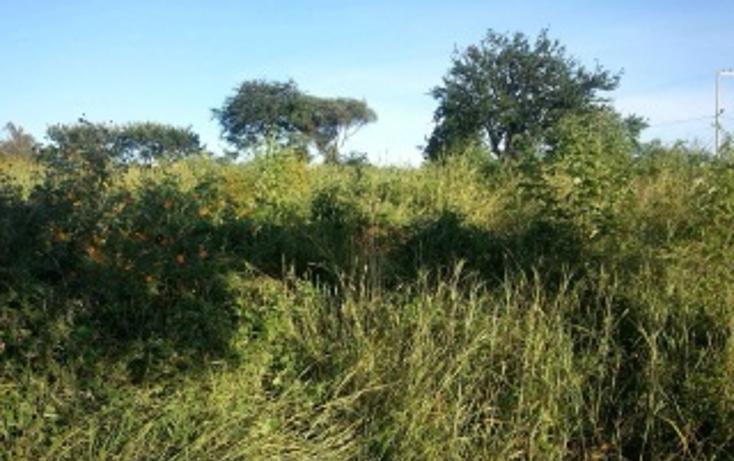 Foto de terreno habitacional en venta en  , plan de oriente, san pedro tlaquepaque, jalisco, 1856250 No. 06