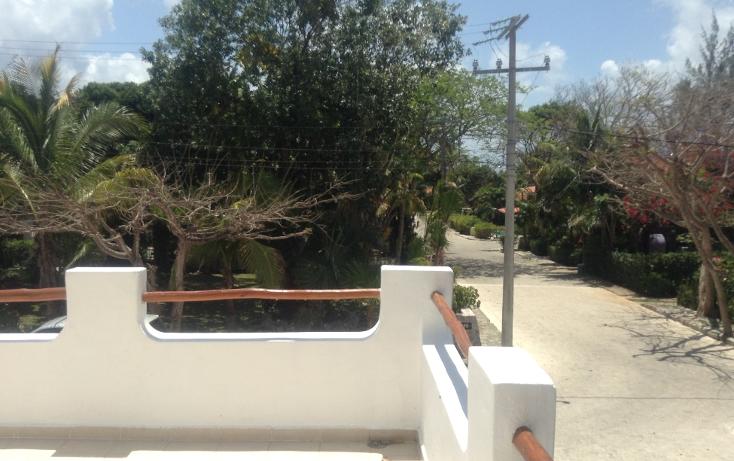 Foto de departamento en renta en  , playa car fase i, solidaridad, quintana roo, 1048909 No. 06