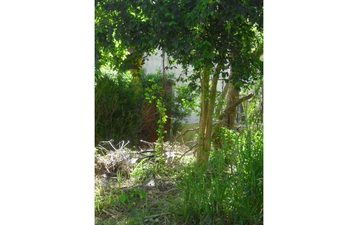 Foto de terreno habitacional en venta en  , playa car fase ii, solidaridad, quintana roo, 1043727 No. 01