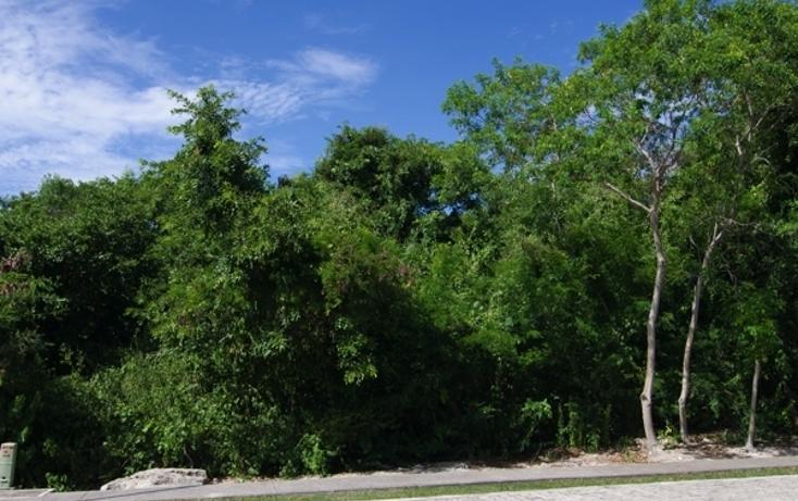 Foto de terreno habitacional en venta en  , playa car fase ii, solidaridad, quintana roo, 724173 No. 03