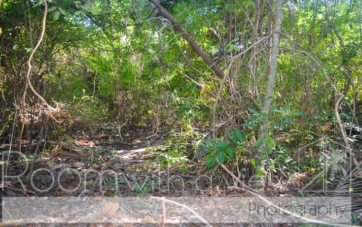 Foto de terreno habitacional en venta en  , playa car fase ii, solidaridad, quintana roo, 774377 No. 03