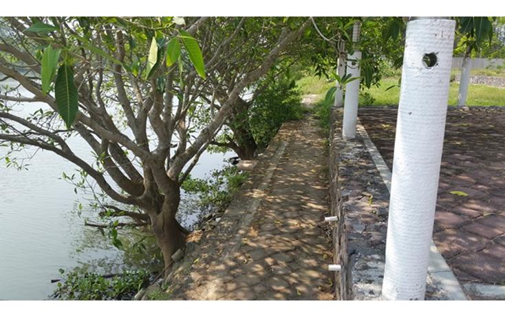 Foto de terreno habitacional en venta en  , playa de vacas, medell?n, veracruz de ignacio de la llave, 1101265 No. 09