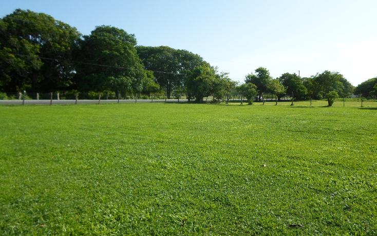 Foto de terreno habitacional en venta en  , playa de vacas, medellín, veracruz de ignacio de la llave, 1104349 No. 13
